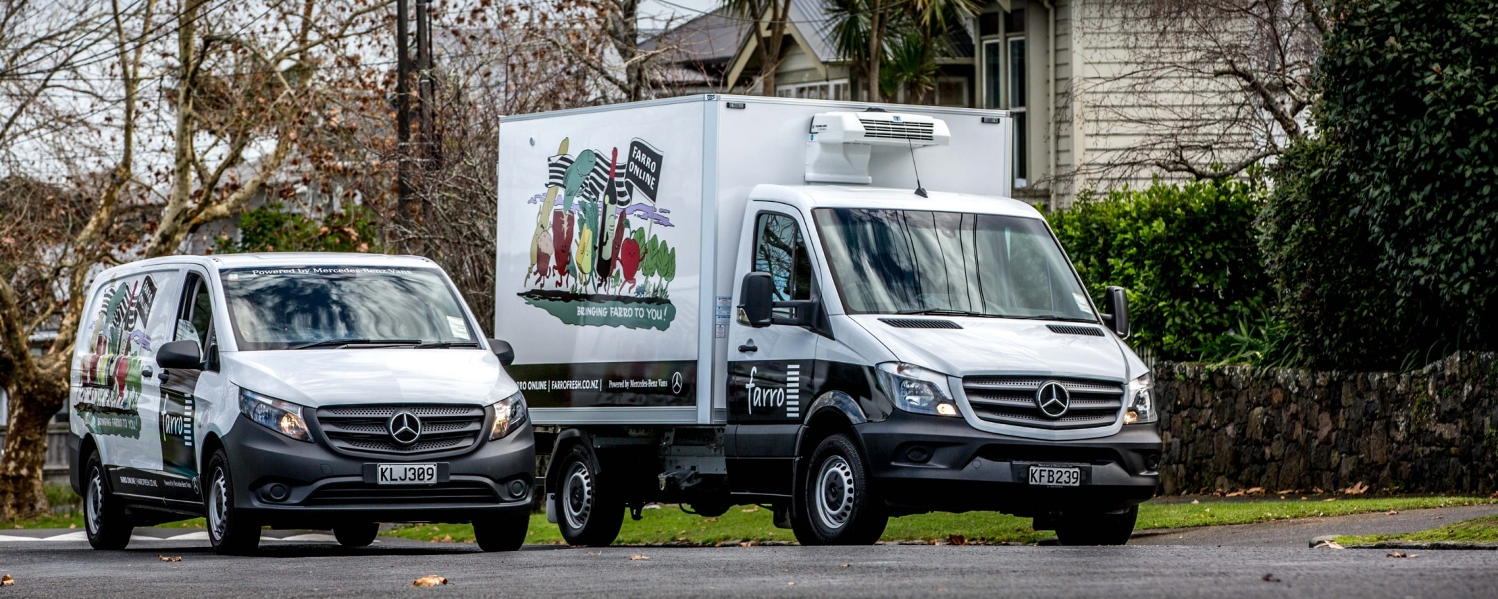 Vans, Love your work, Fresh deliveries, Vito, Sprinter cab chassis, Farro, NZ, Business